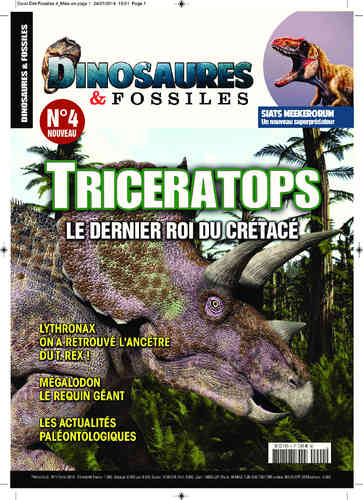 Dinosaures & Fossiles #04
