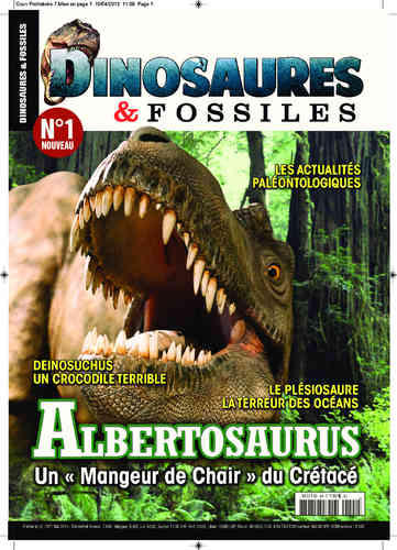 Dinosaures & Fossiles #01