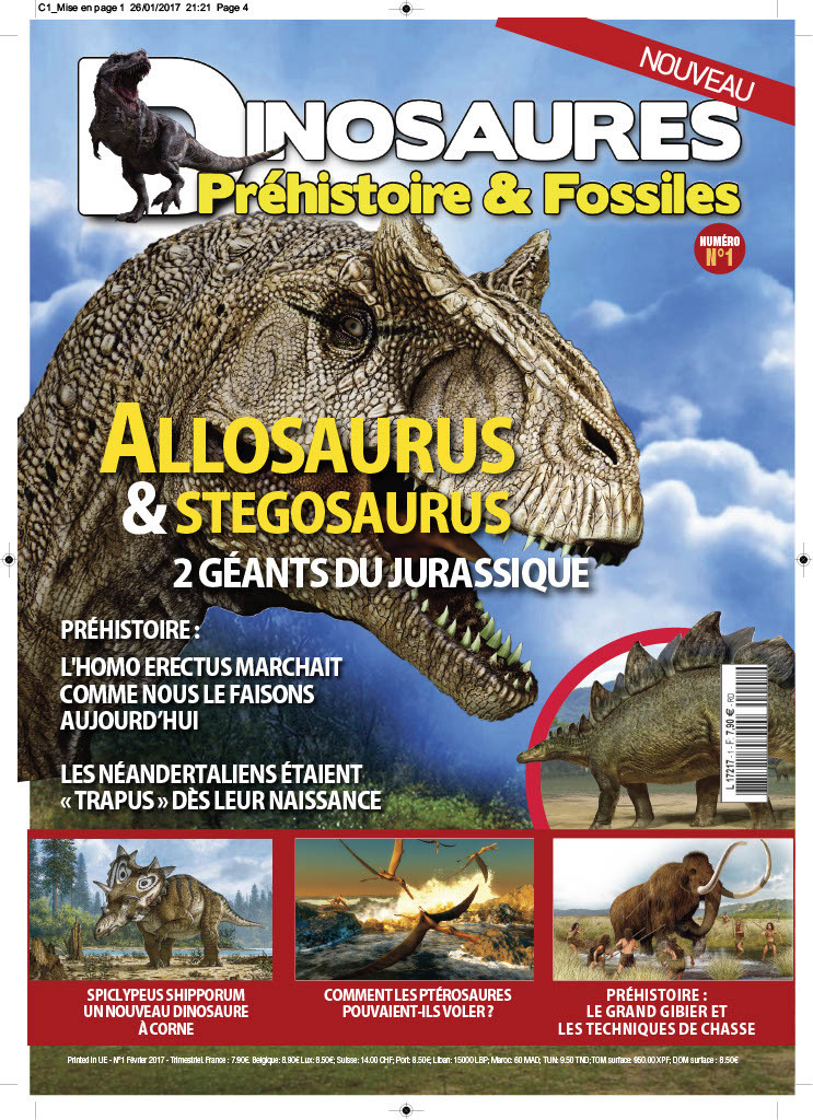 dinosaures pr histoire fossiles 01 sciences la boutique. Black Bedroom Furniture Sets. Home Design Ideas