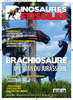 Dinosaures & Fossiles #07