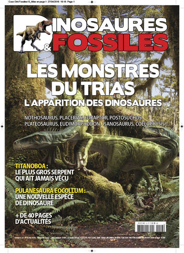 Dinosaures & Fossiles #13